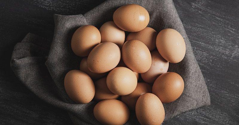 Suplement diety ze skorupek jaj.