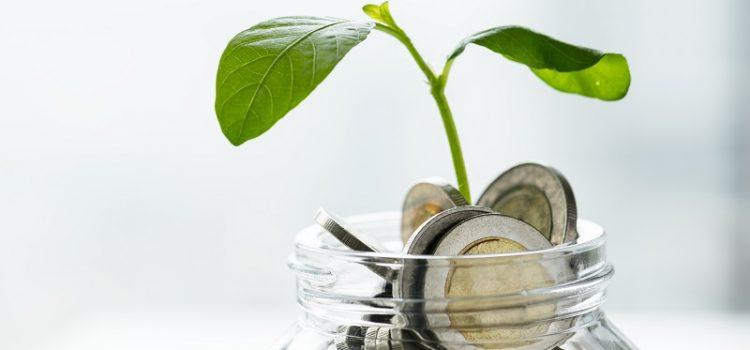 Jak oszczędzać bez budżetu domowego?