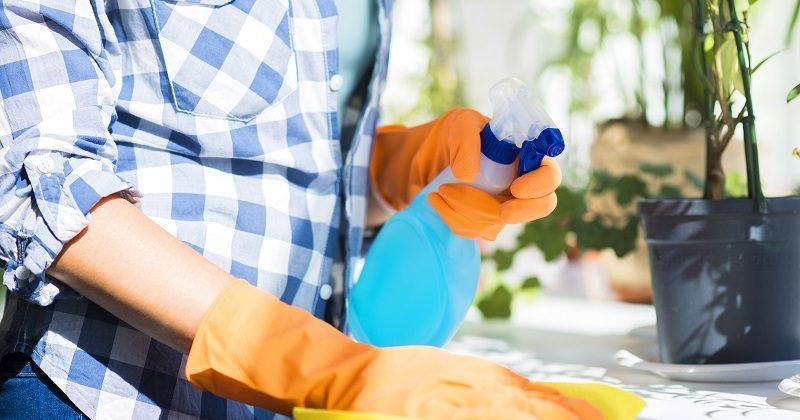Firmy oferujące sprzątanie mieszkań Wrocław